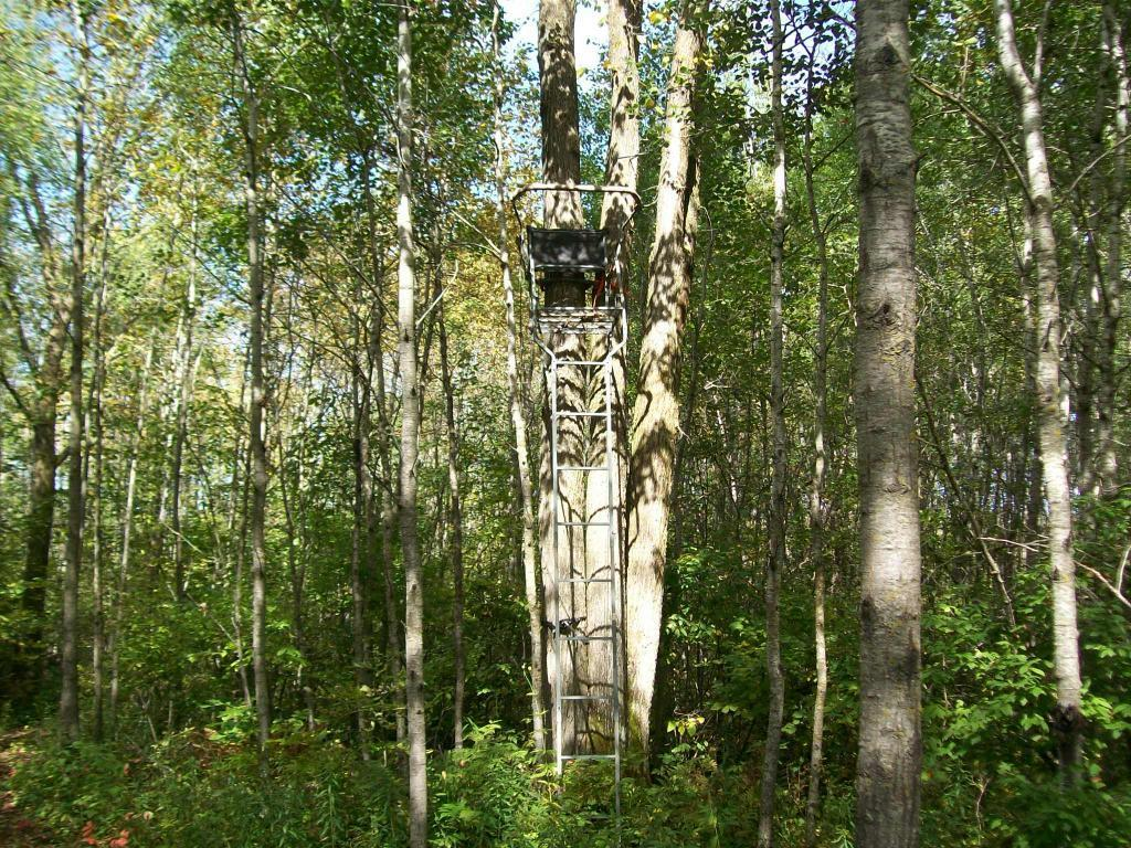 XXX Cattle Dr. Property Photo - Sandstone, MN real estate listing
