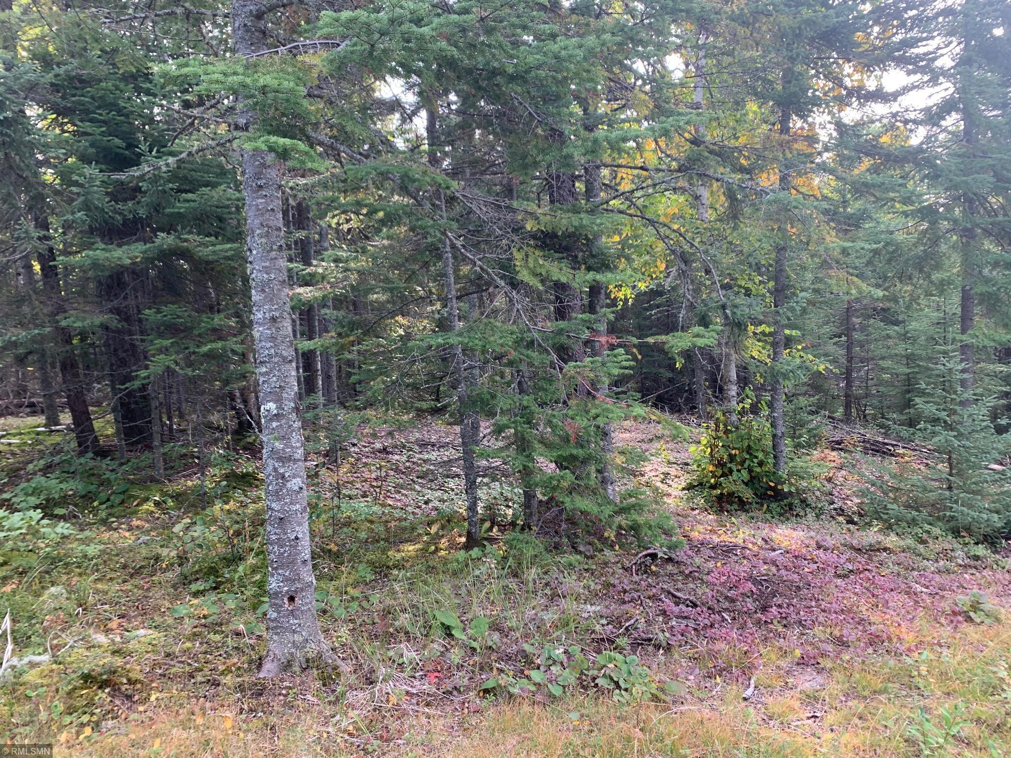 4675 E Hwy 61 Property Photo - Hovland, MN real estate listing