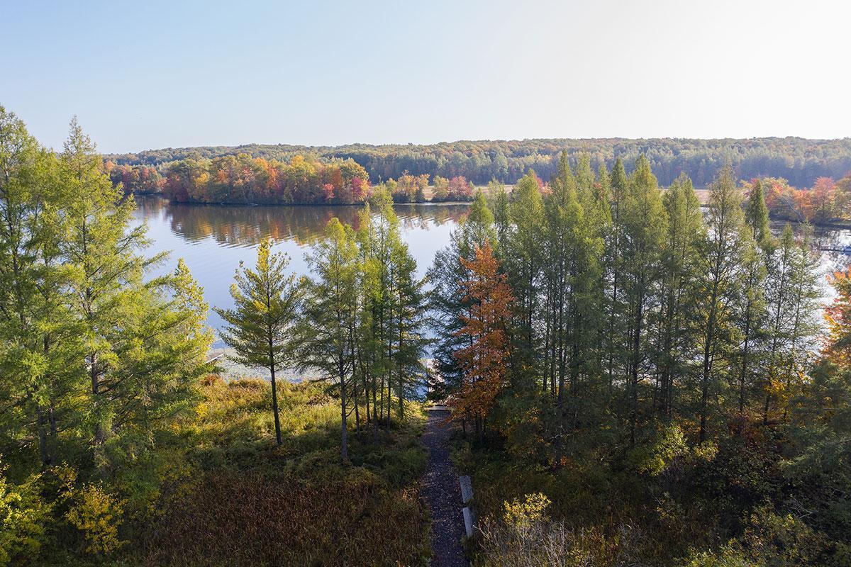 16156 W Musky Point Drive Property Photo - Sand Lake Twp, WI real estate listing