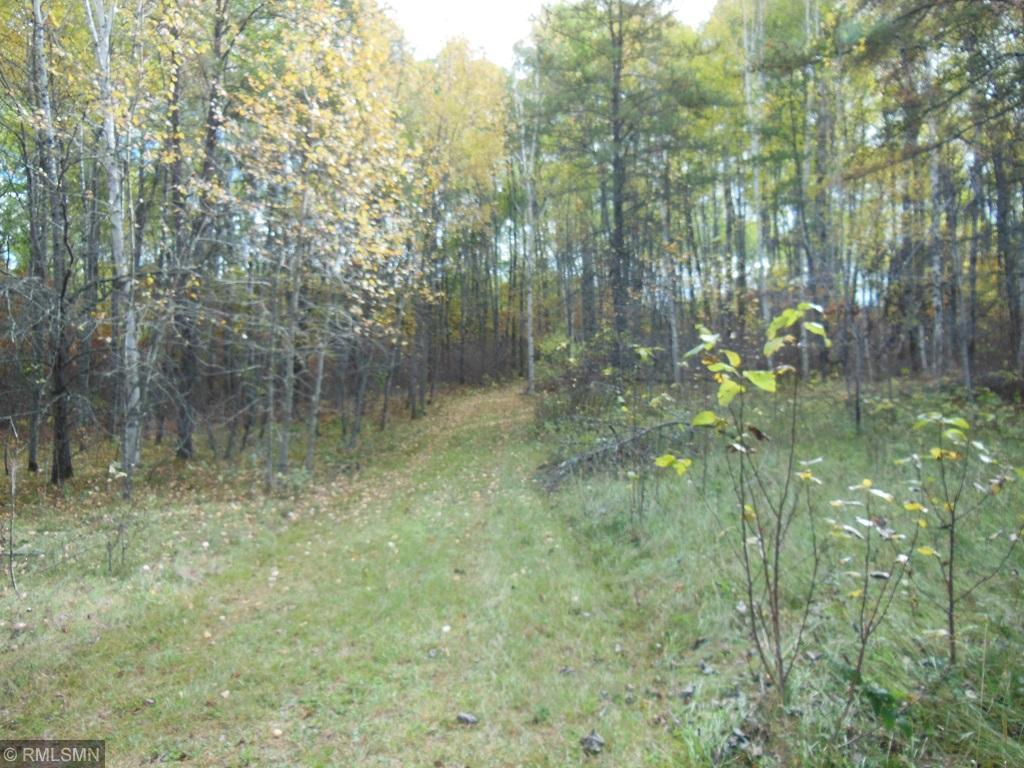 TBD NW 68th Avenue Property Photo - Akeley, MN real estate listing