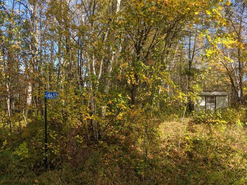 46378 Lost Green Green Property Photo - Garrison, MN real estate listing