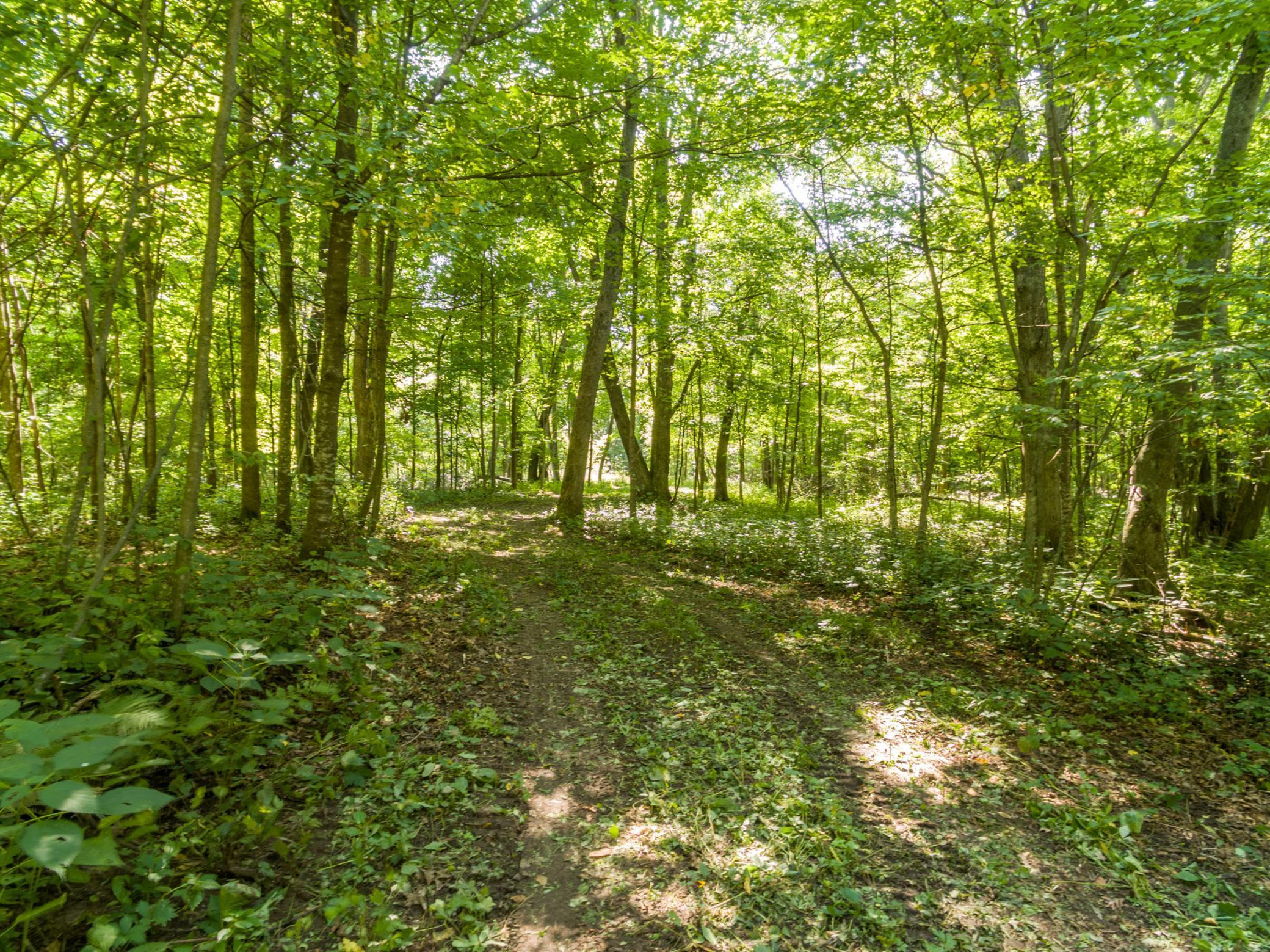 Lot 5 Hwy 46 Property Photo - Balsam Lake, WI real estate listing