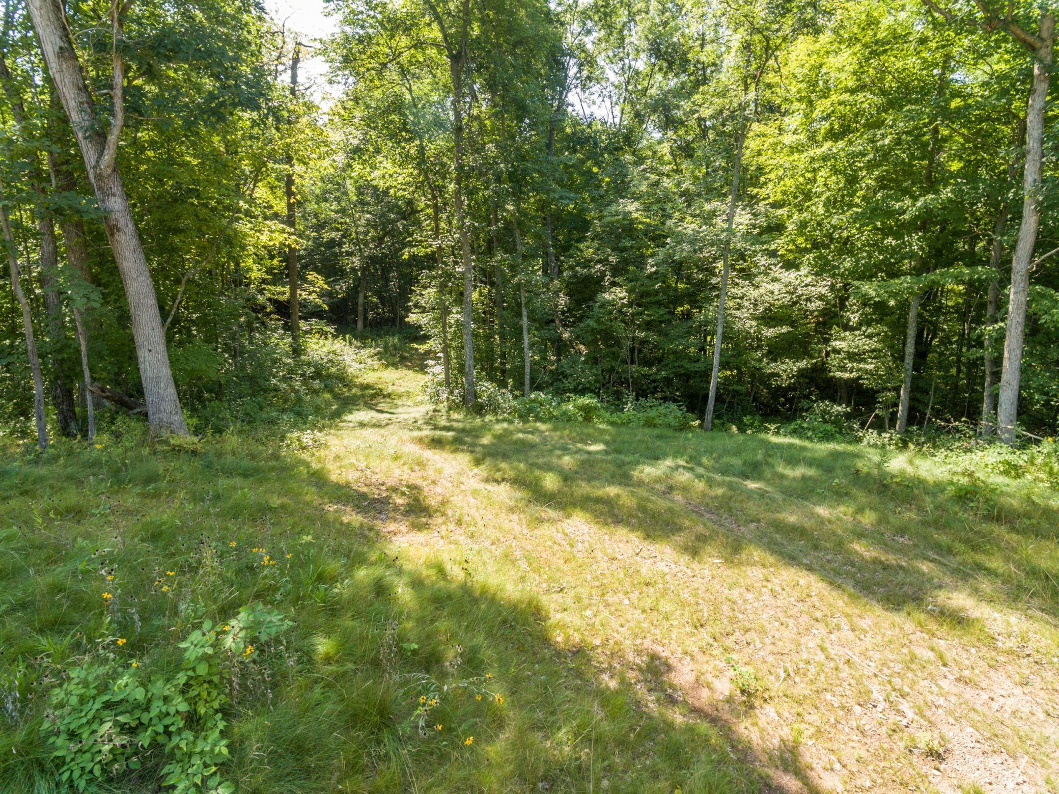 Lot 10 Hwy 46 Property Photo - Balsam Lake, WI real estate listing