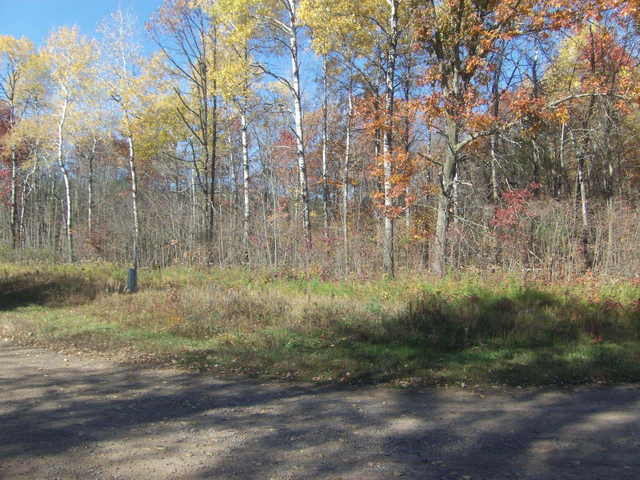 10 Acres River Road Property Photo - Washington Twp, WI real estate listing
