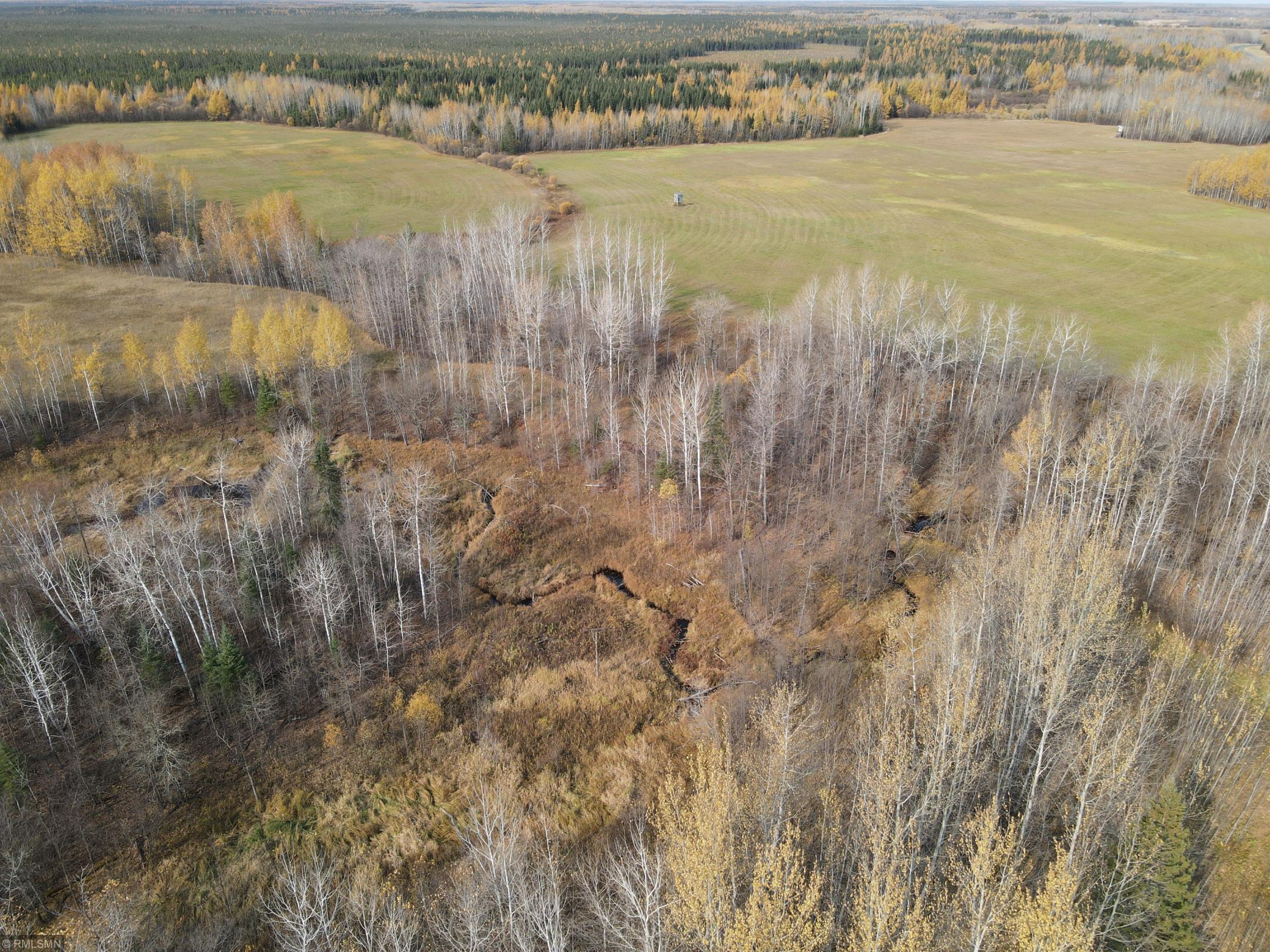 XXX Black River Road Property Photo - South Koochiching Unorg. Terr., MN real estate listing