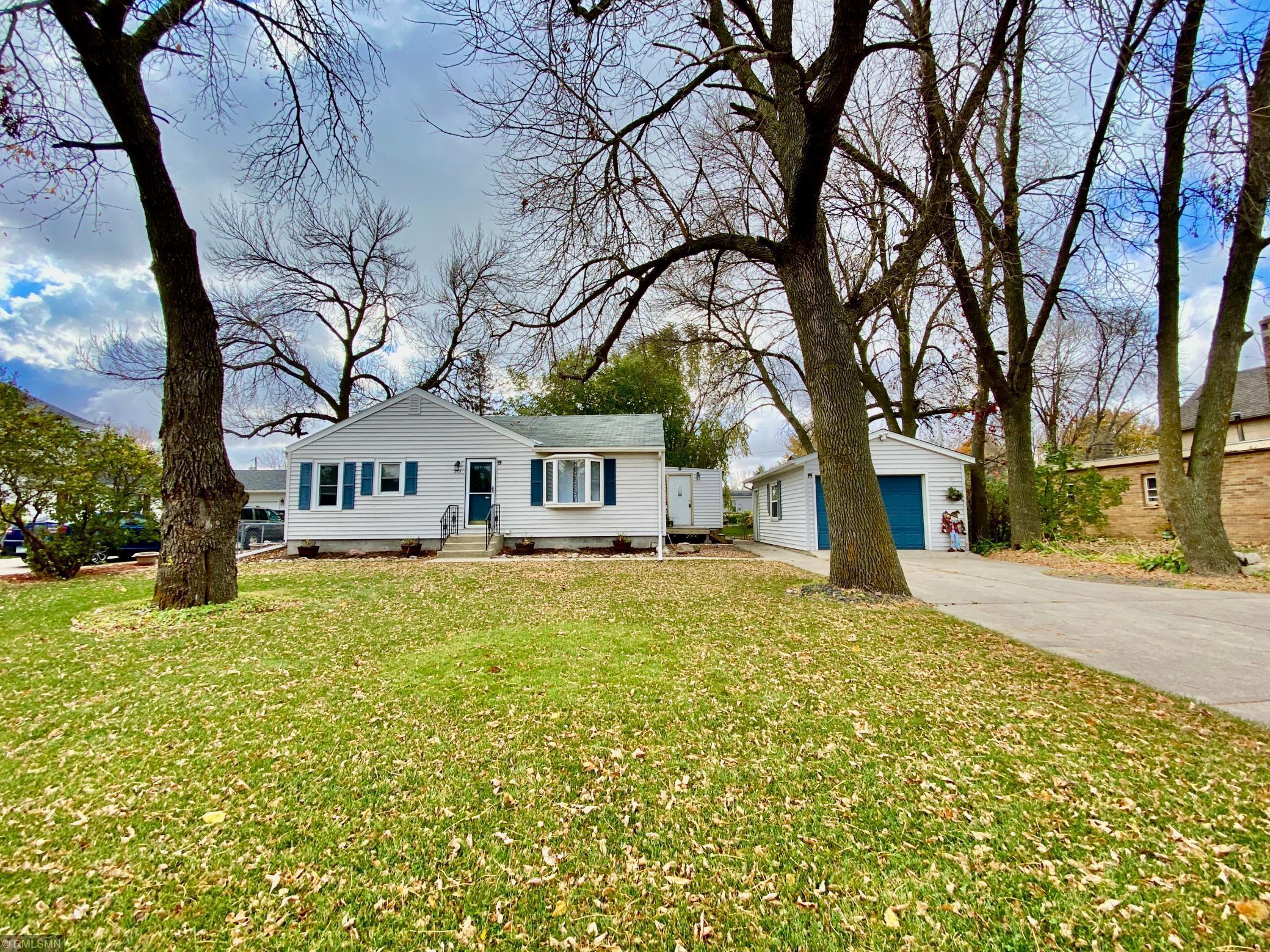 713 Spruce Avenue Property Photo - Madison Lake, MN real estate listing