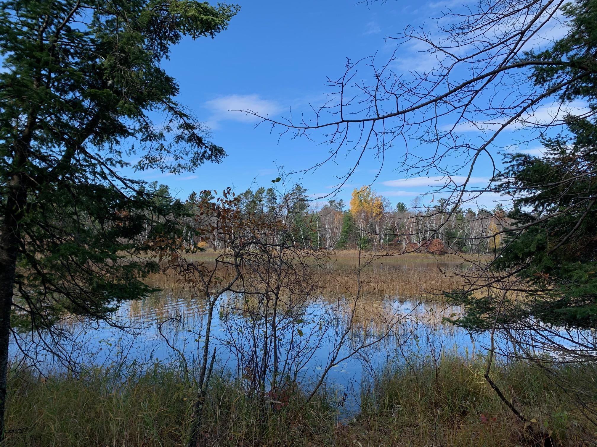 Tract 5 McKeown Point Trail NW Property Photo - Hackensack, MN real estate listing