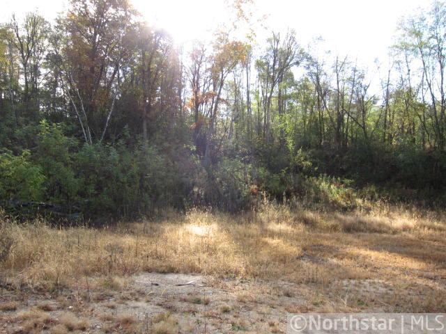2010 Neal Street Property Photo - Red Wing, MN real estate listing