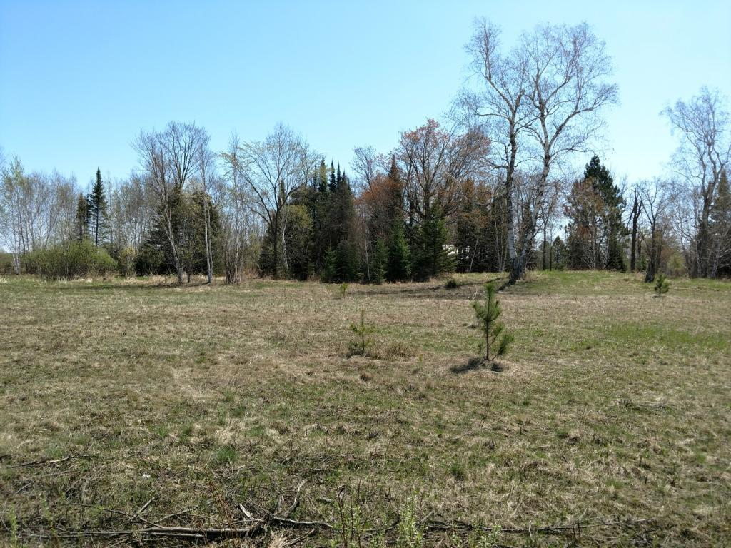 6064 Woodbury Drive Property Photo - Wright, MN real estate listing