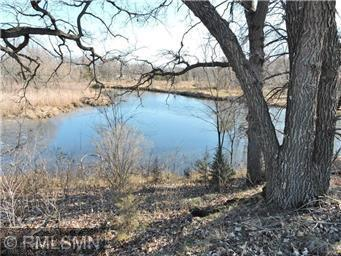 Lot 11, Blk 2, 119th Avenue SE Property Photo - Becker, MN real estate listing
