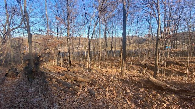 723 S Highway 35 Property Photo - Saint Croix Falls, WI real estate listing