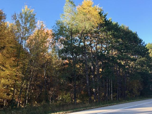 XXXX Viking Boulevard Property Photo - East Bethel, MN real estate listing
