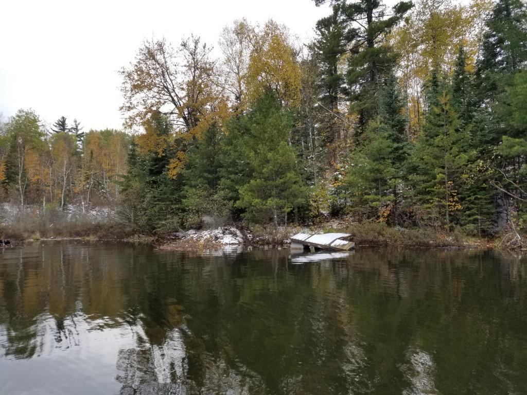 xxx Boundary Road Property Photo - Morse Twp, MN real estate listing