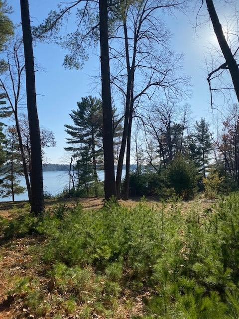 TBD Anchor Point Road Property Photo - Crosslake, MN real estate listing