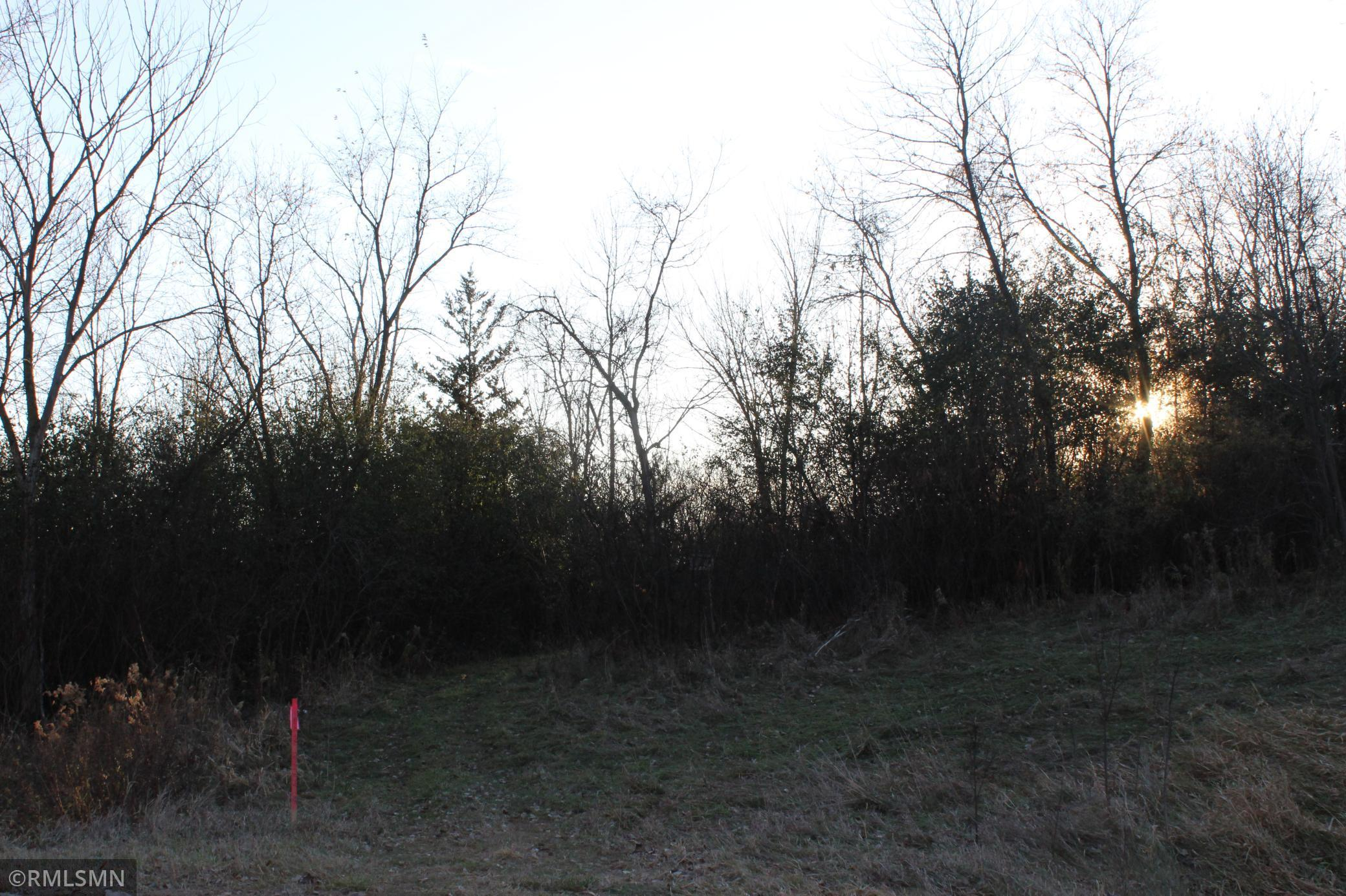 4xxx (C) Eckert Avenue Property Photo - Delano, MN real estate listing