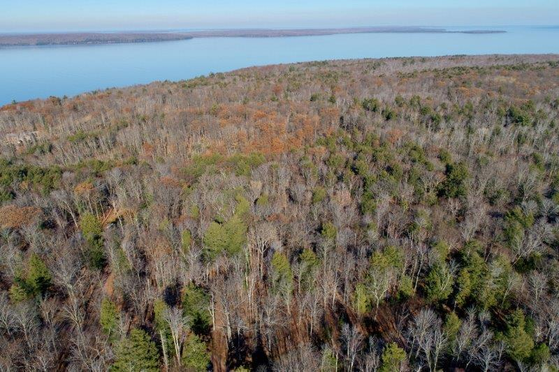Lot 14 N Shore Drive Property Photo - La Pointe, WI real estate listing