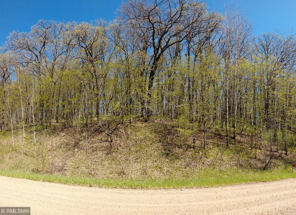 XXX Ottawa Drive Property Photo - Browerville, MN real estate listing