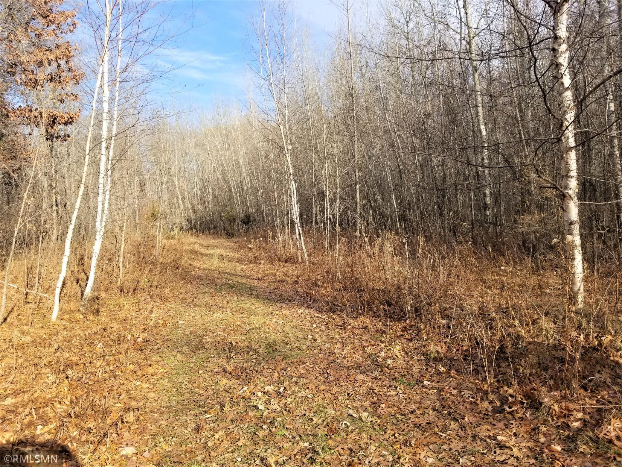 Lot 2 90th Avenue Property Photo - Osceola Twp, WI real estate listing