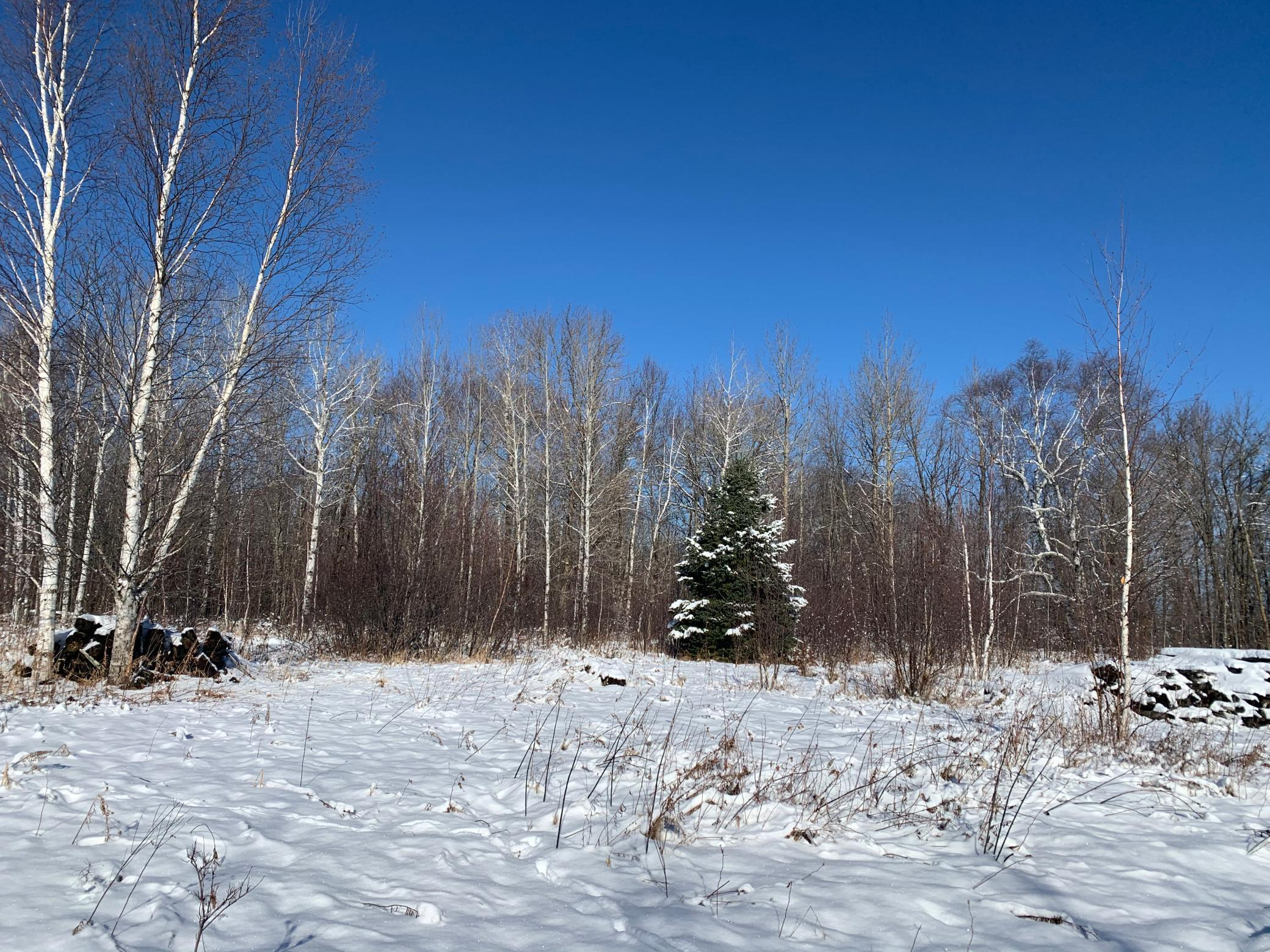 NA CTY RD 32 Property Photo - Cloverton, MN real estate listing
