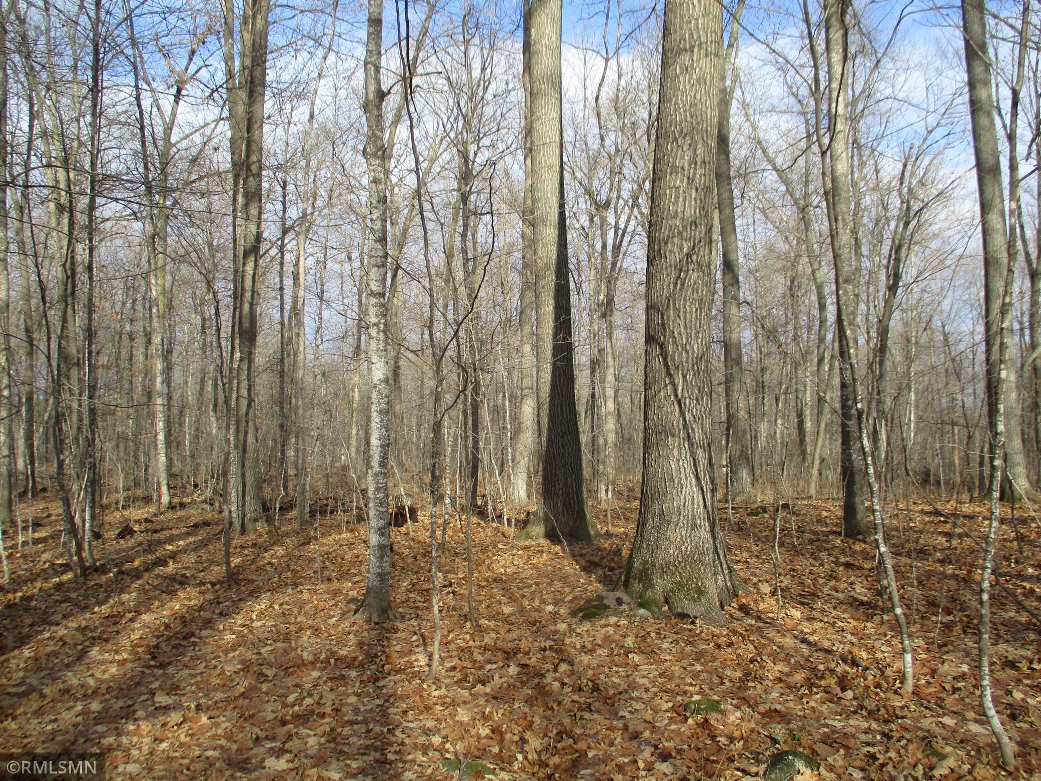 XXX County Rd GG Property Photo - Milltown, WI real estate listing