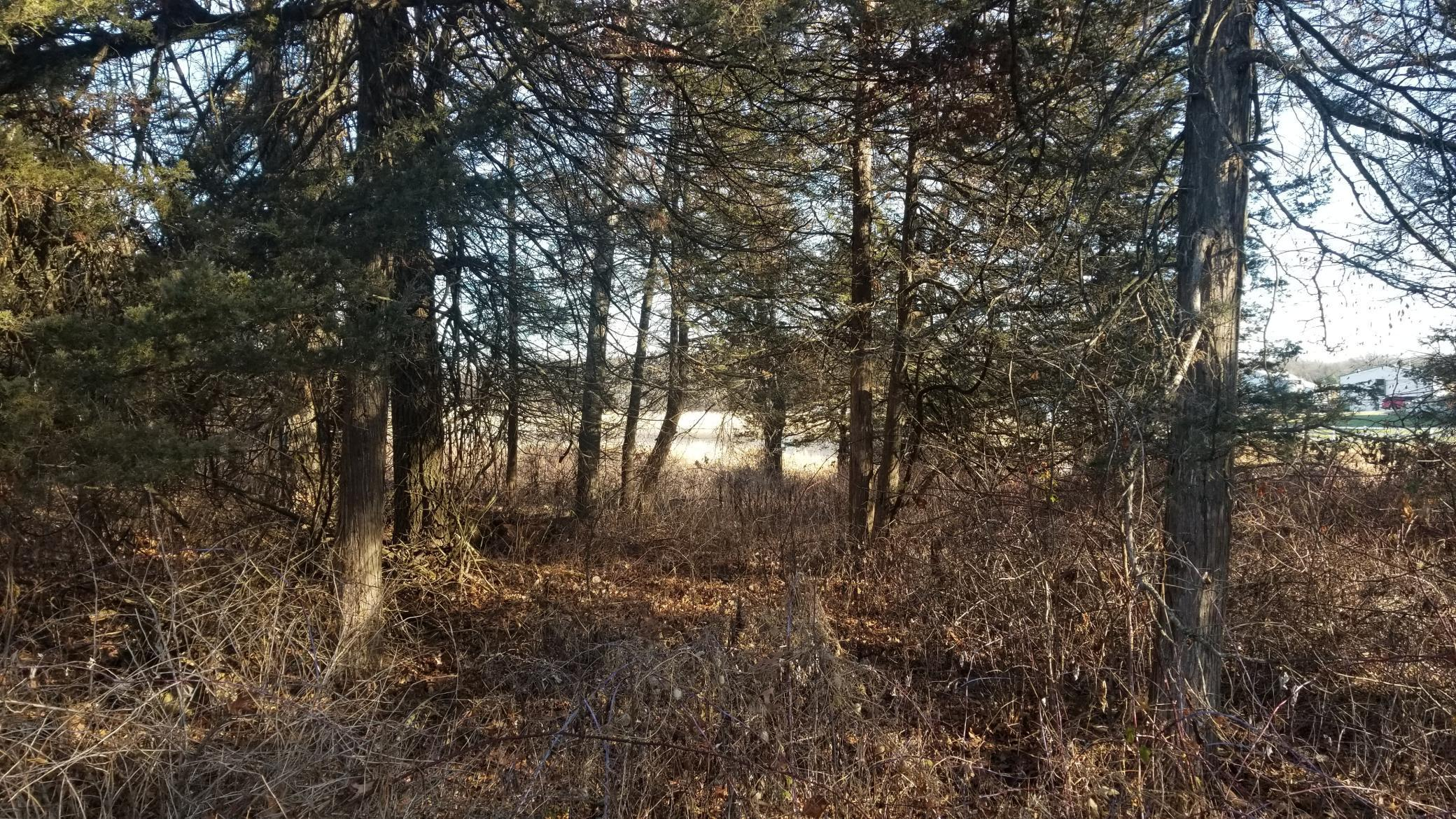 20721 Kiowa Street NW Property Photo - Oak Grove, MN real estate listing