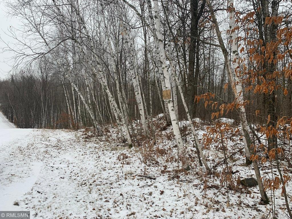 123 Wilderness Drive Property Photo - Park Rapids, MN real estate listing