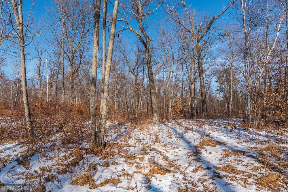 TBD East Gull Lake Dr. Property Photo - East Gull Lake, MN real estate listing
