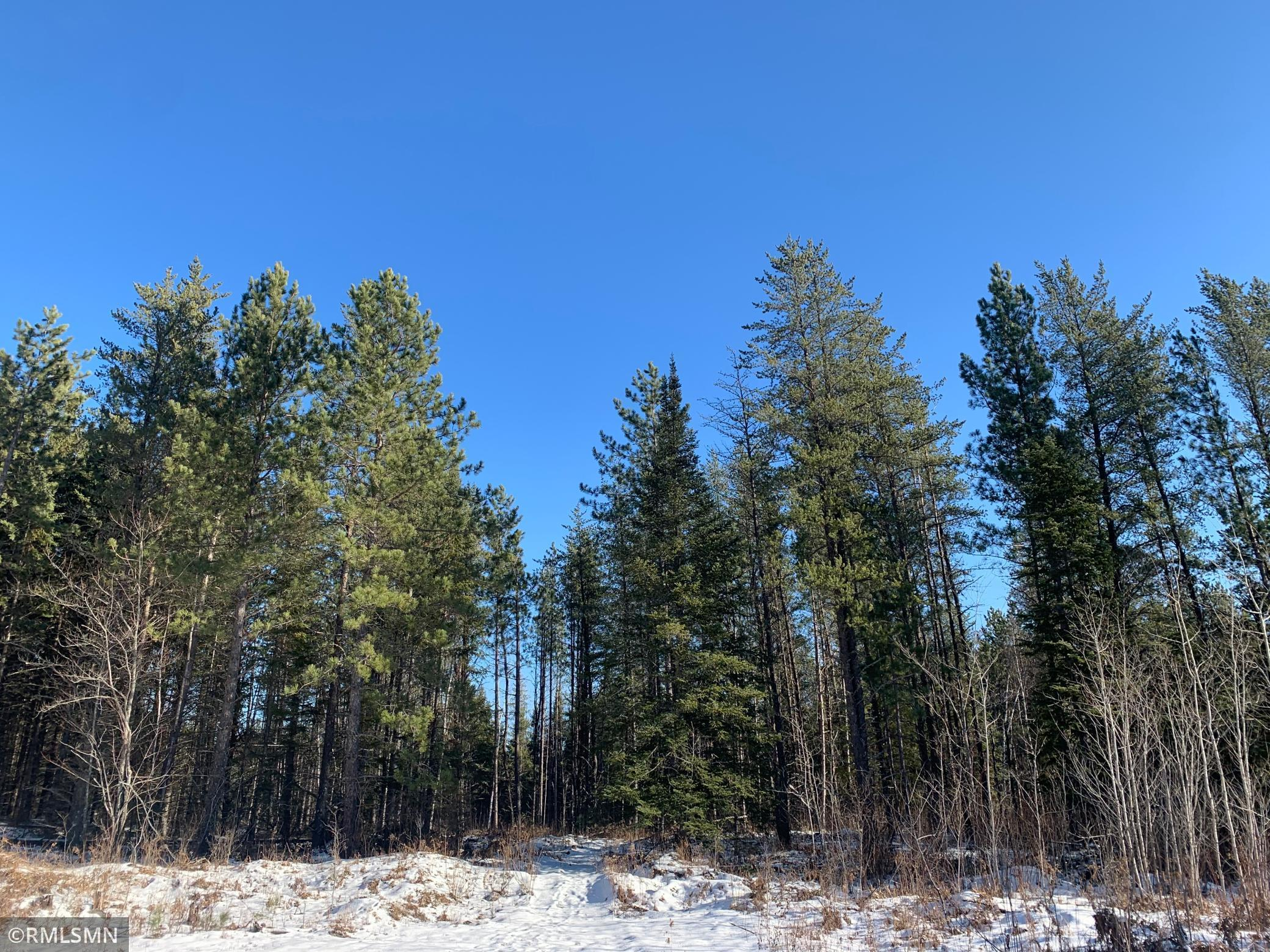 xxx Mesaba Trunk Road Property Photo - Side Lake, MN real estate listing