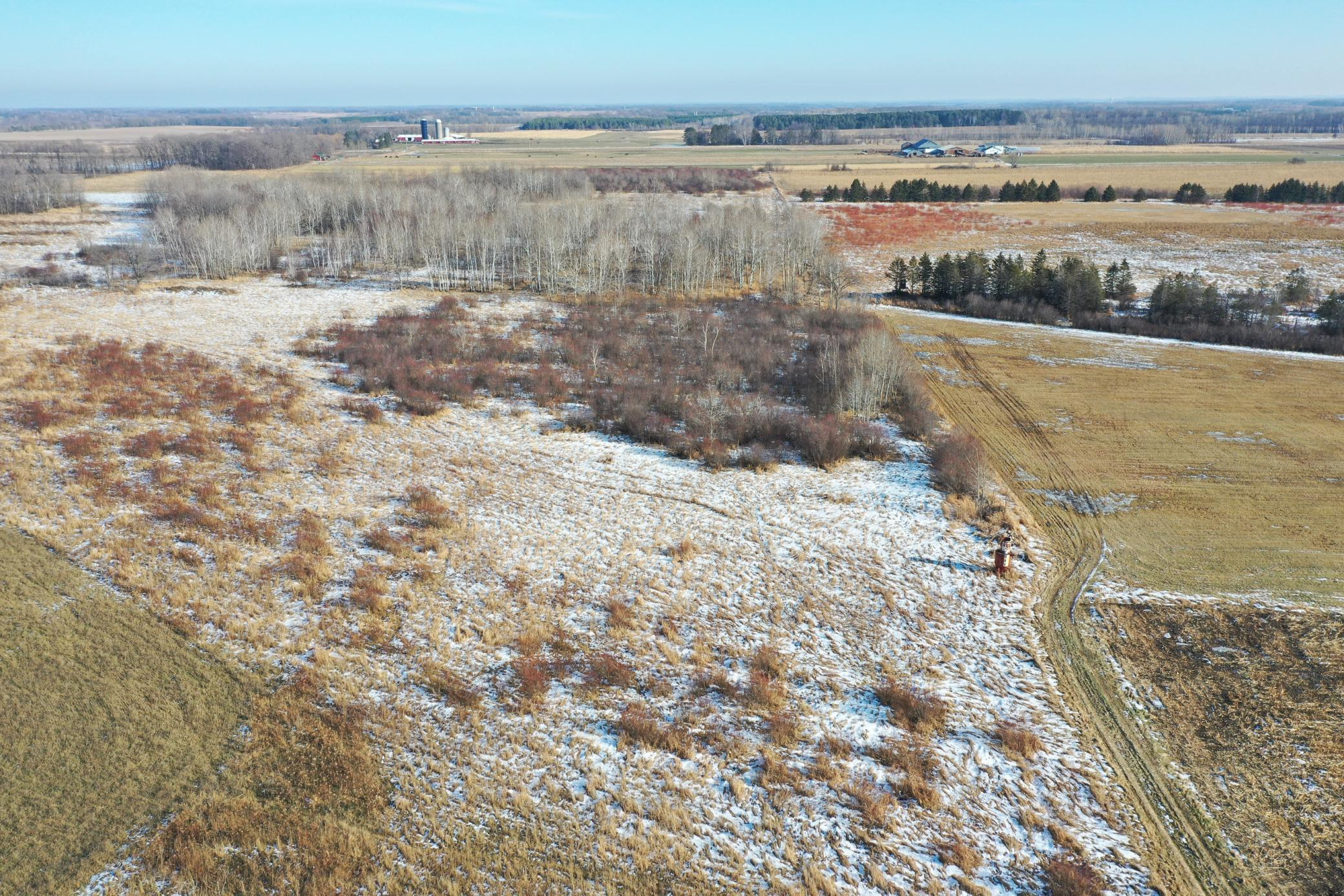 TBD County Road 3 Property Photo - Eagle Bend, MN real estate listing