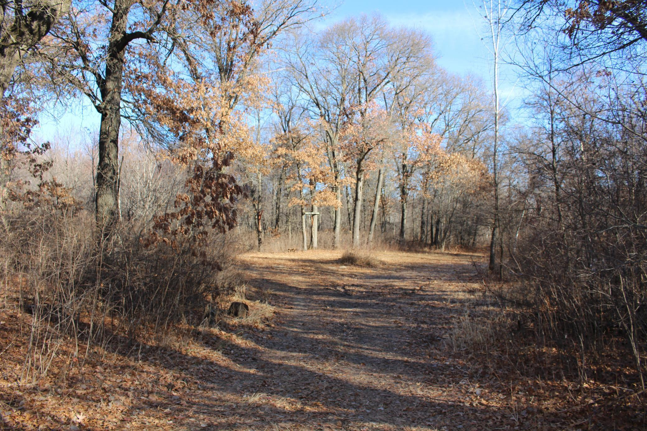 XXX NW 209th Avenue Property Photo - Big Lake Twp, MN real estate listing