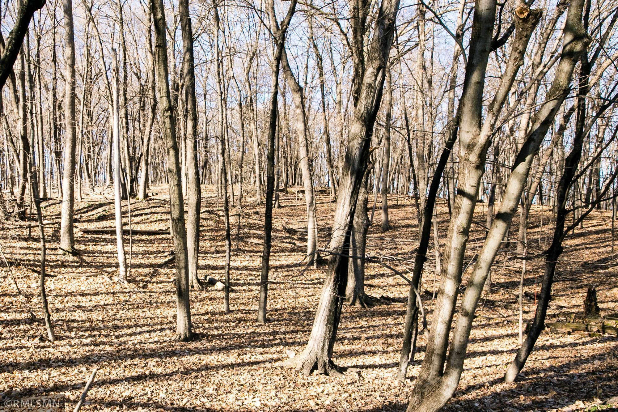 1025 Wildhurst Trail Property Photo 1