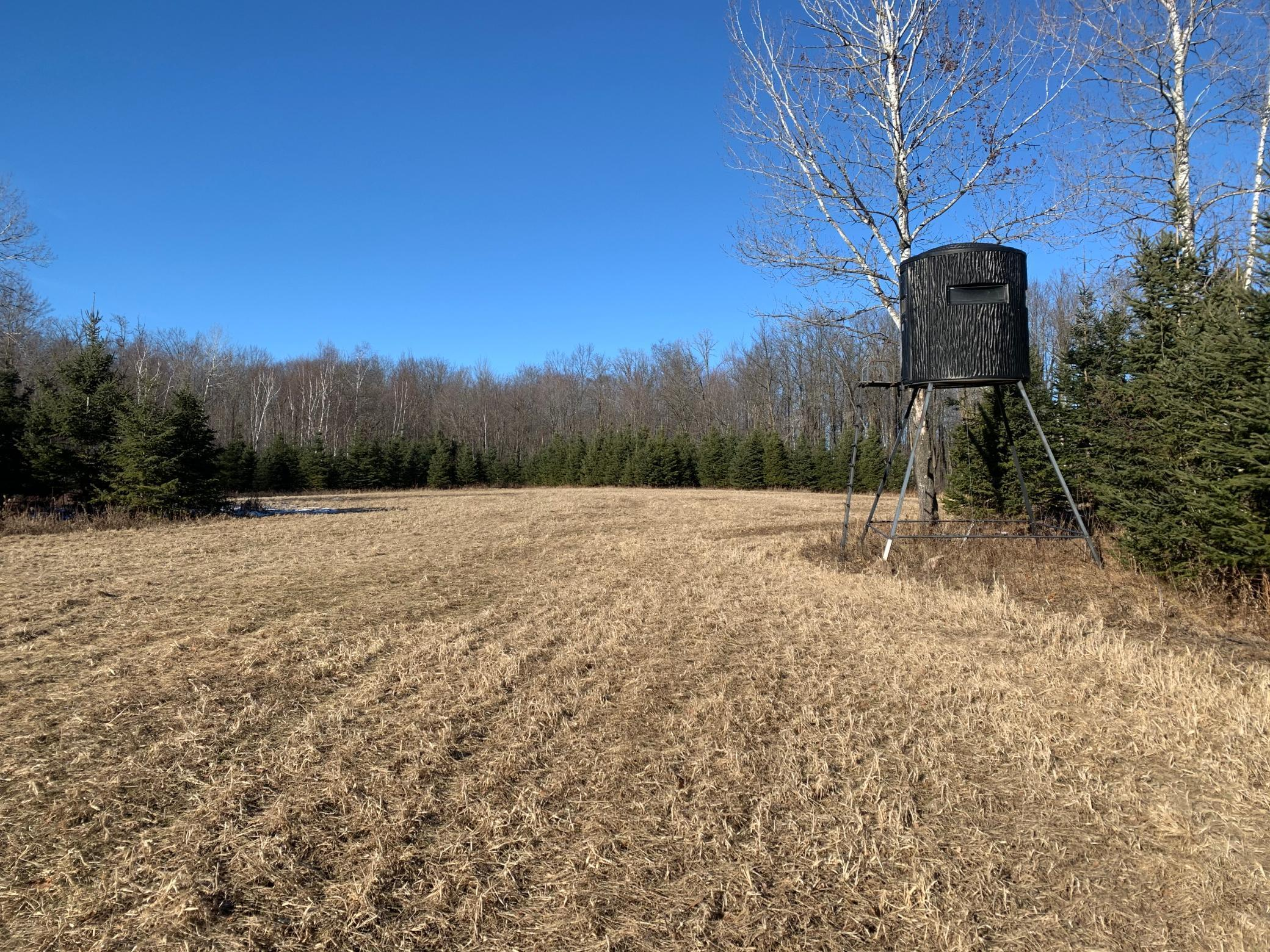 NA Fleming Logging Property Photo - Hinckley, MN real estate listing
