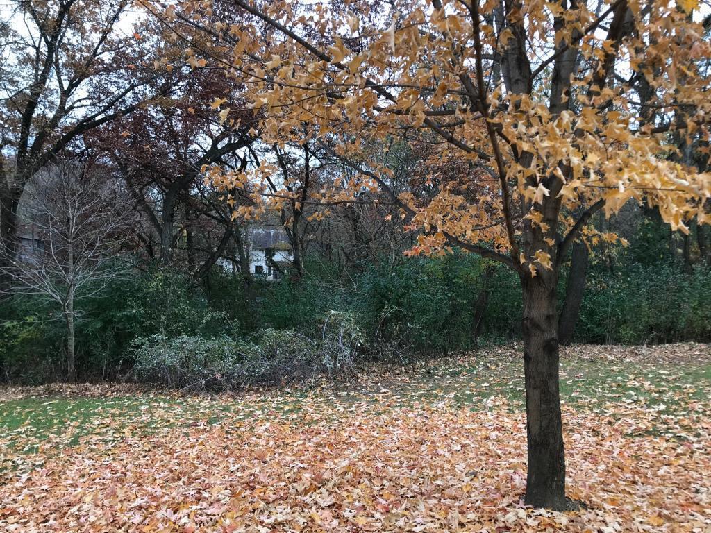 14033 Oakwood Road Extension Property Photo