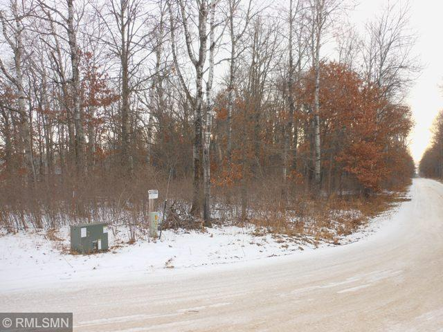 Tbd* 12th Avenue SW Property Photo - Jenkins, MN real estate listing