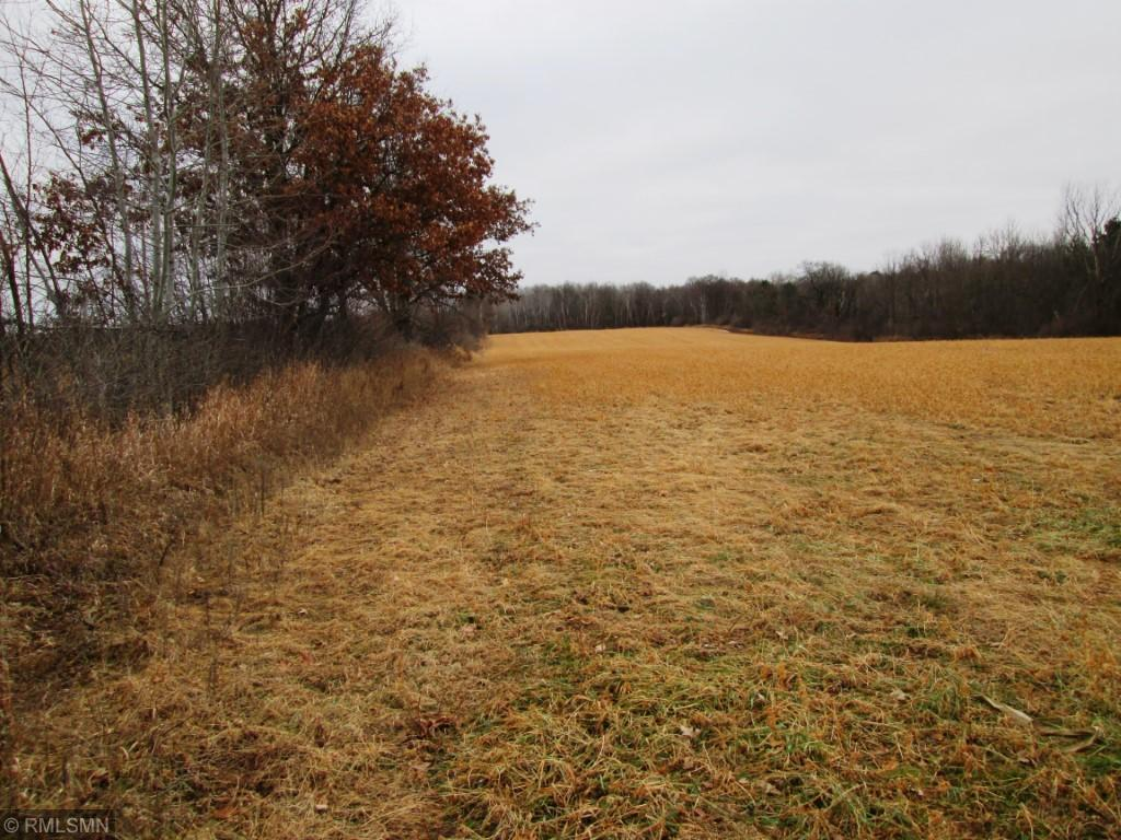 xxx 145th Avenue Property Photo - Apple River Twp, WI real estate listing