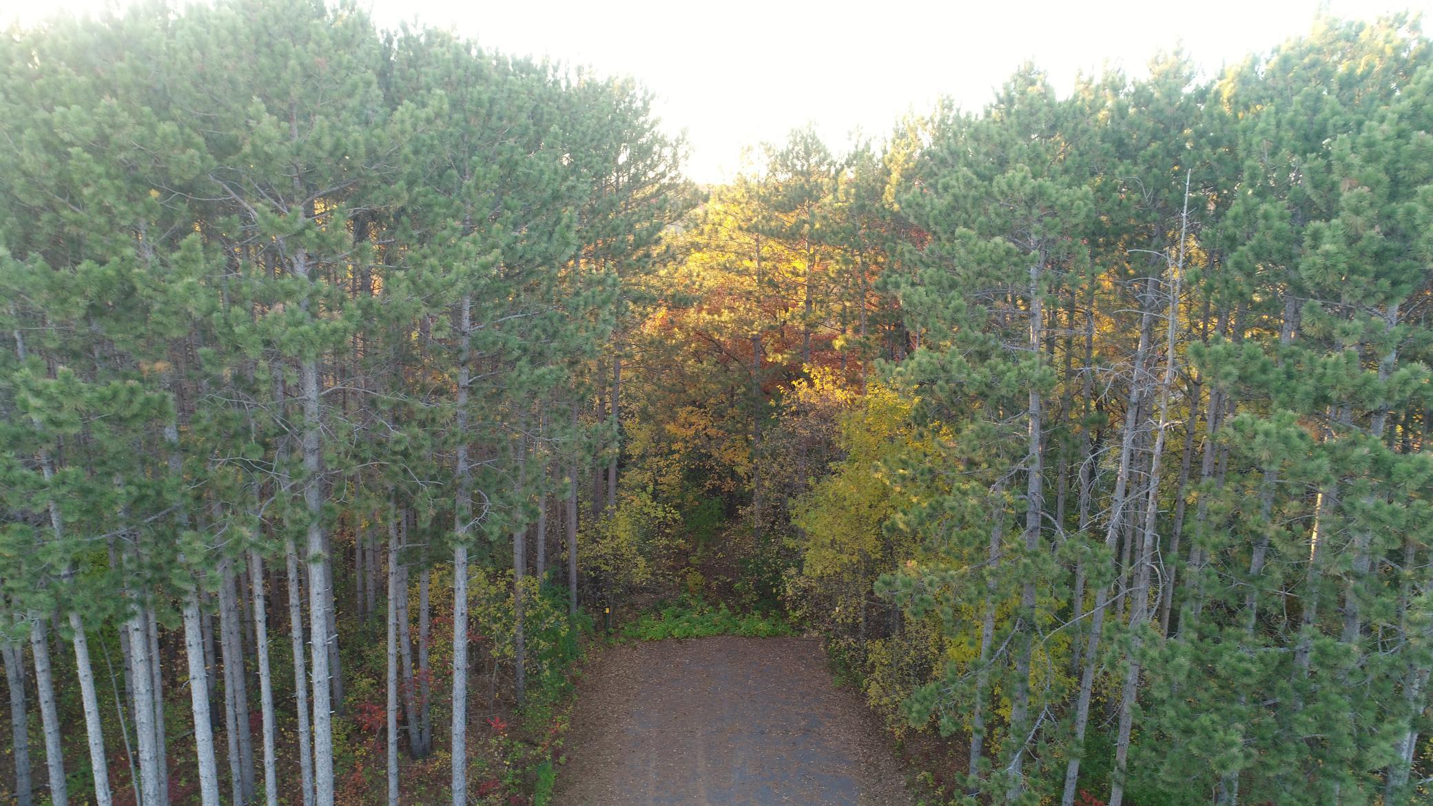 Autumn Prairie Real Estate Listings Main Image