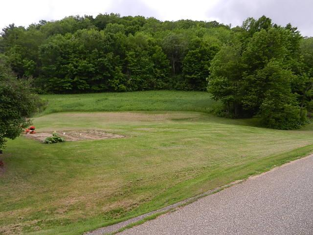 3 Acres Cherry Avenue Property Photo - Plum City, WI real estate listing