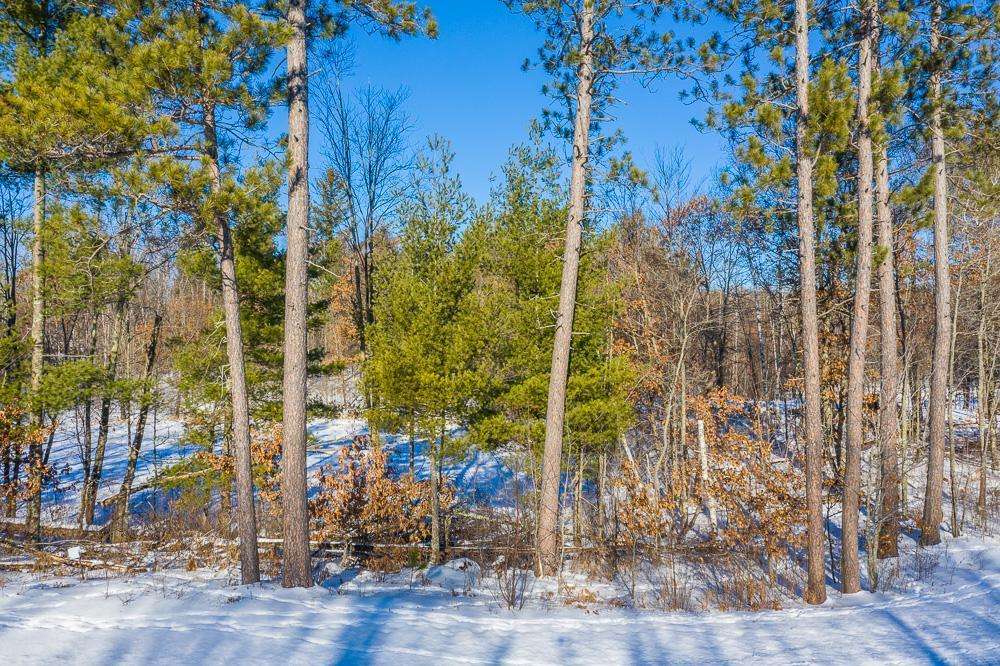 Cottage Wood Estates Real Estate Listings Main Image