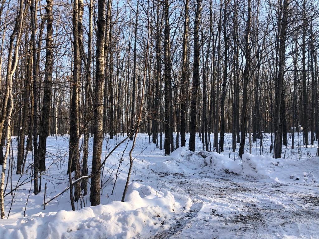 Lot 5 Leigh Drive Property Photo - Bruno, MN real estate listing