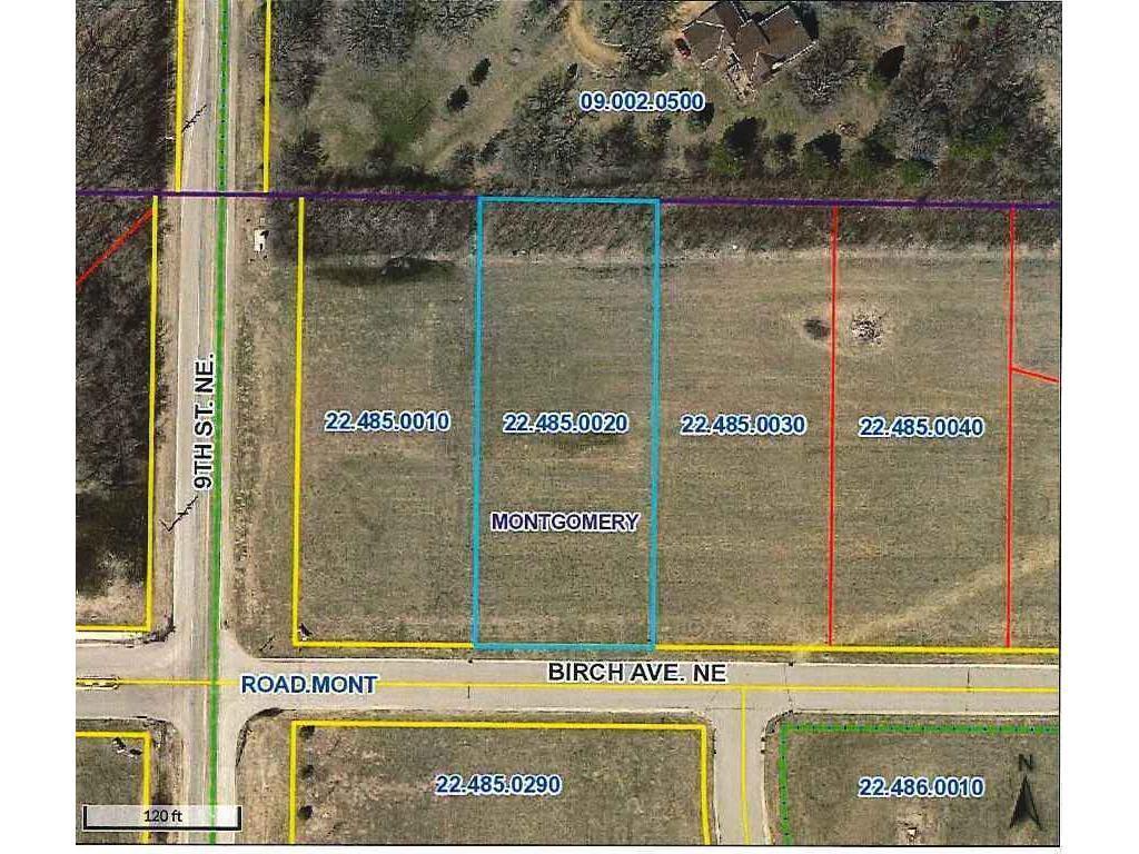 1005 Birch Avenue NE Property Photo - Montgomery, MN real estate listing