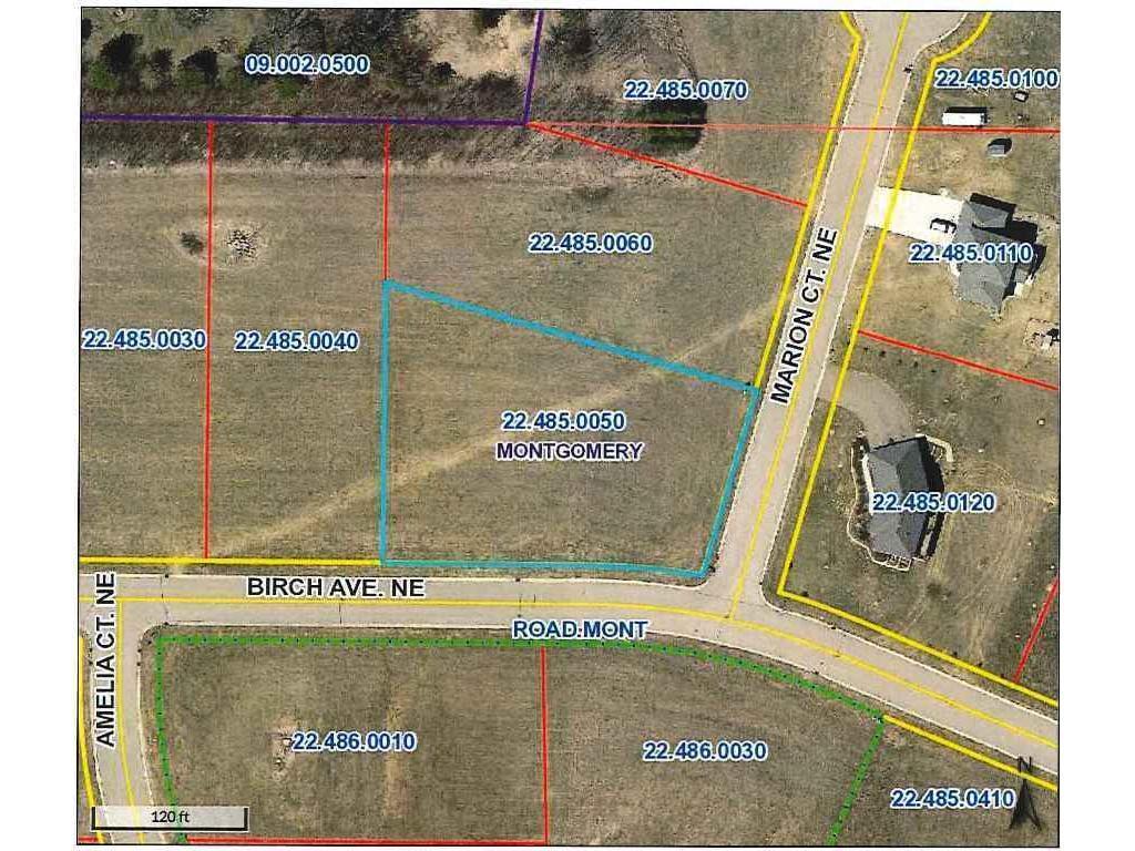 1017 Birch Avenue NE Property Photo - Montgomery, MN real estate listing