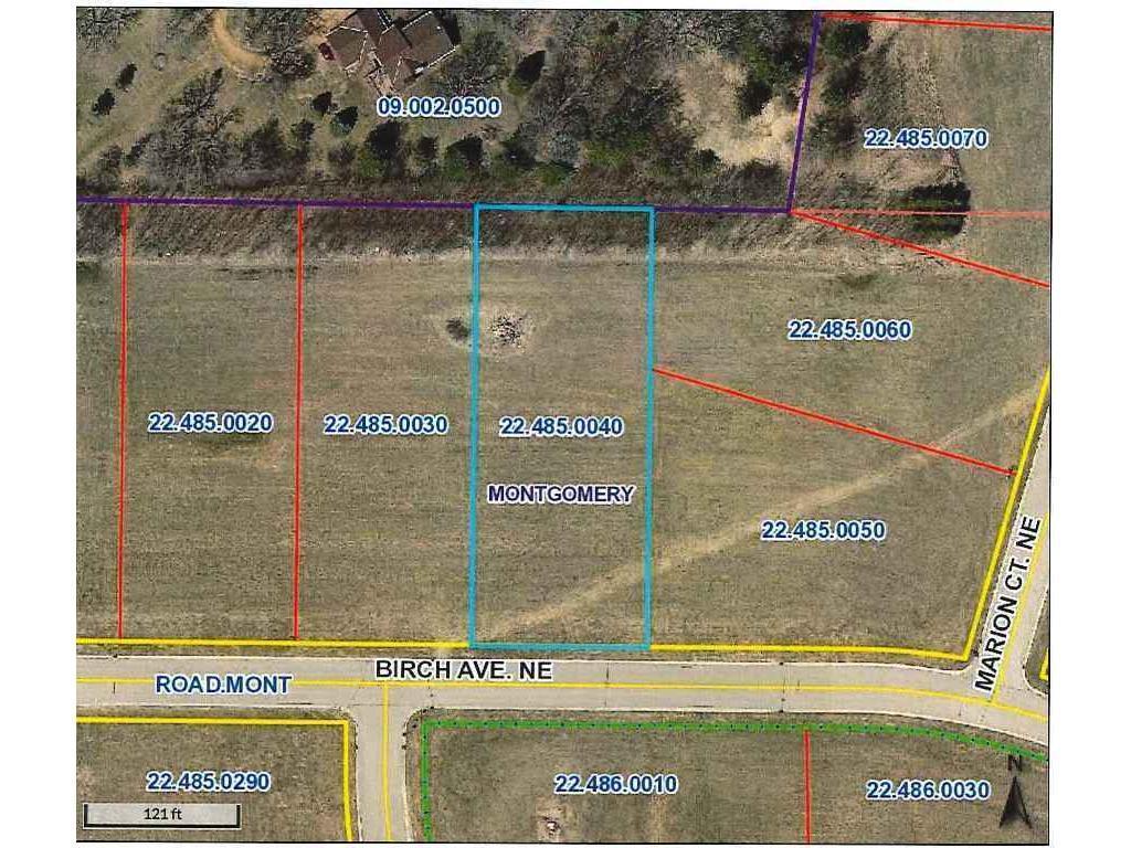 1013 Birch Avenue NE Property Photo - Montgomery, MN real estate listing