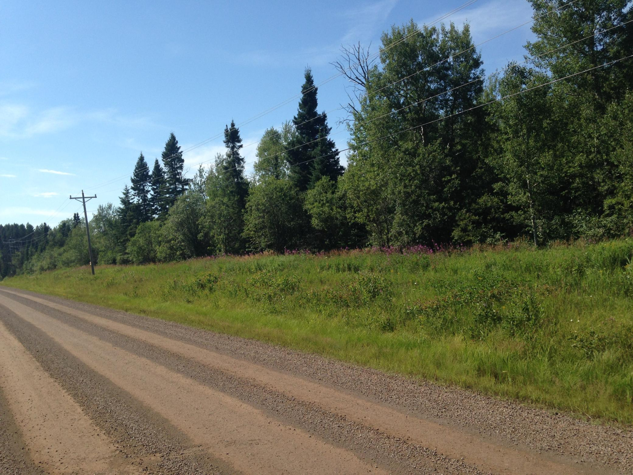 0 County Road 6 Property Photo - Grand Marais, MN real estate listing
