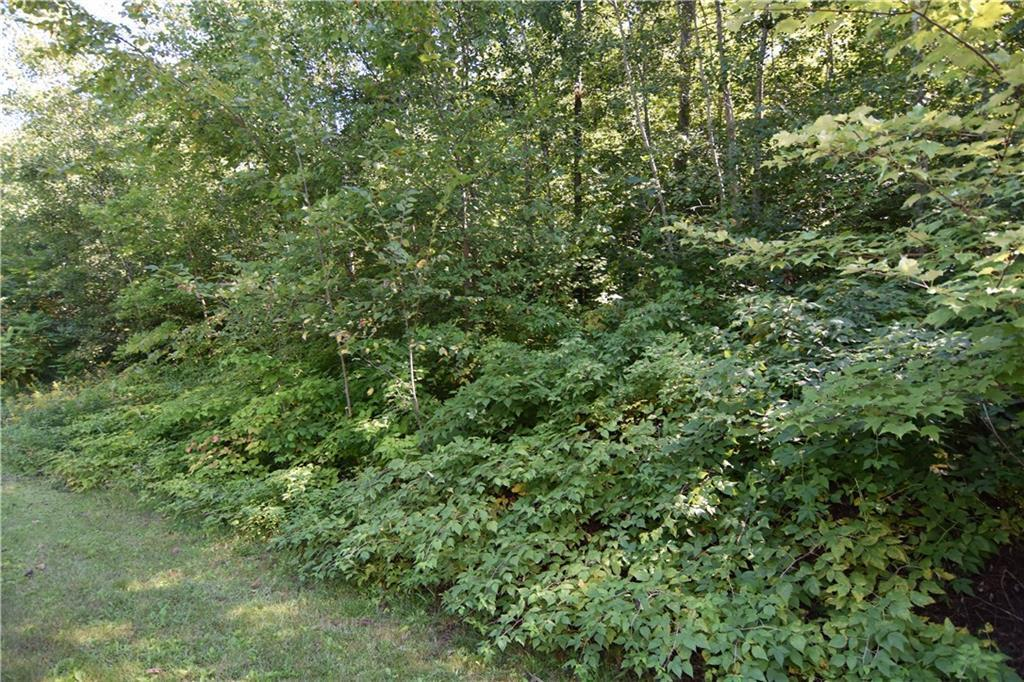 Lot 20 20 3/8 Property Photo - Stanley Twp, WI real estate listing