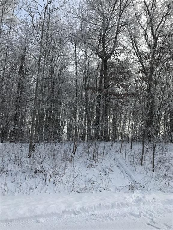 Lot 19 20 3/8 Property Photo - Stanley Twp, WI real estate listing