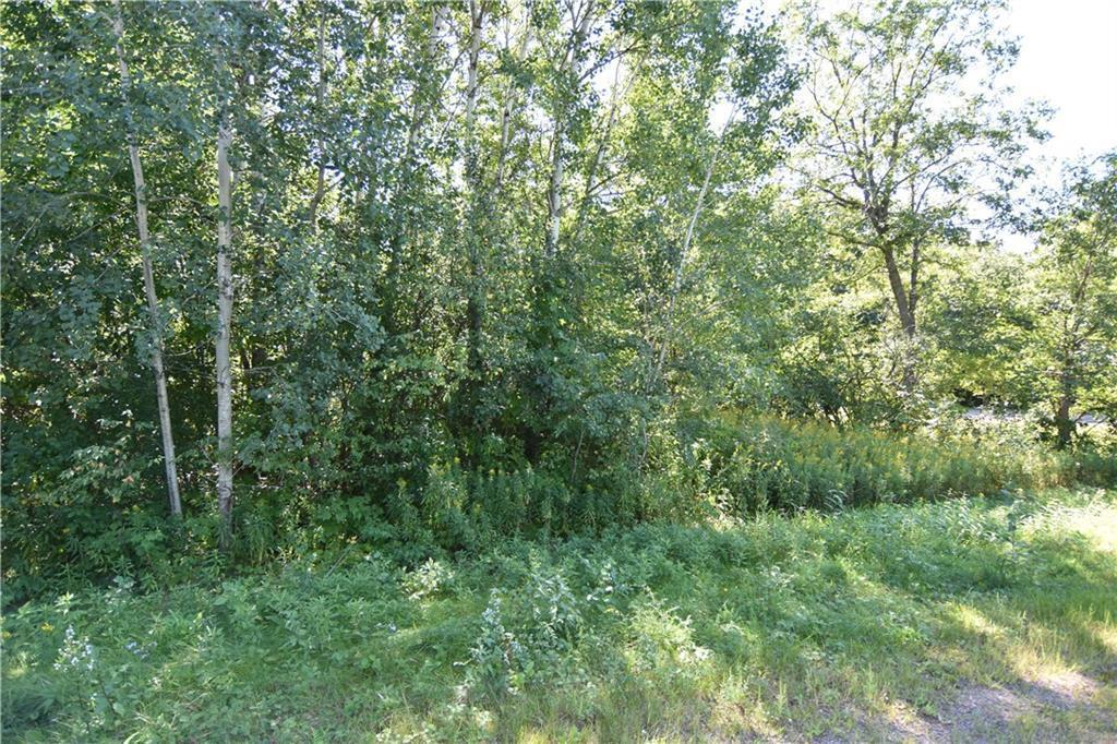 Lot 17 20 3/8 Property Photo - Stanley Twp, WI real estate listing