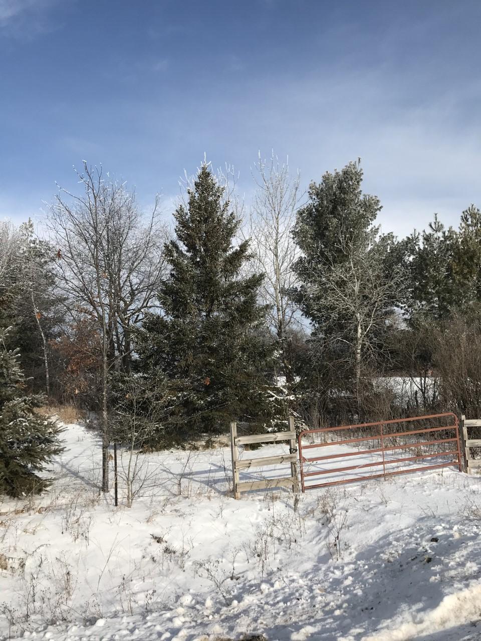 0 10 3/4 Property Photo - Prairie Lake Twp, WI real estate listing