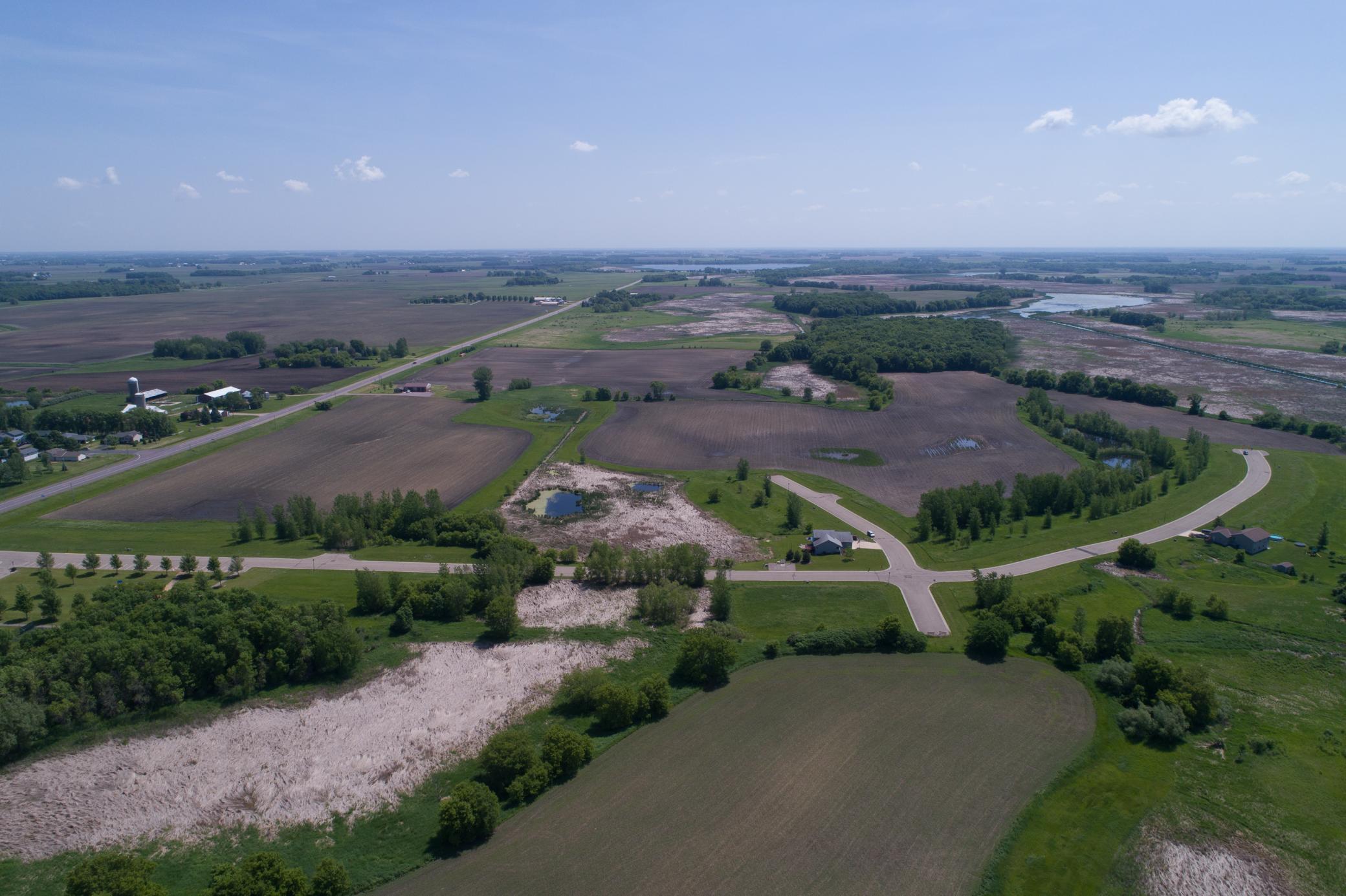 310 Lake Erin Drive Property Photo - Green Isle, MN real estate listing