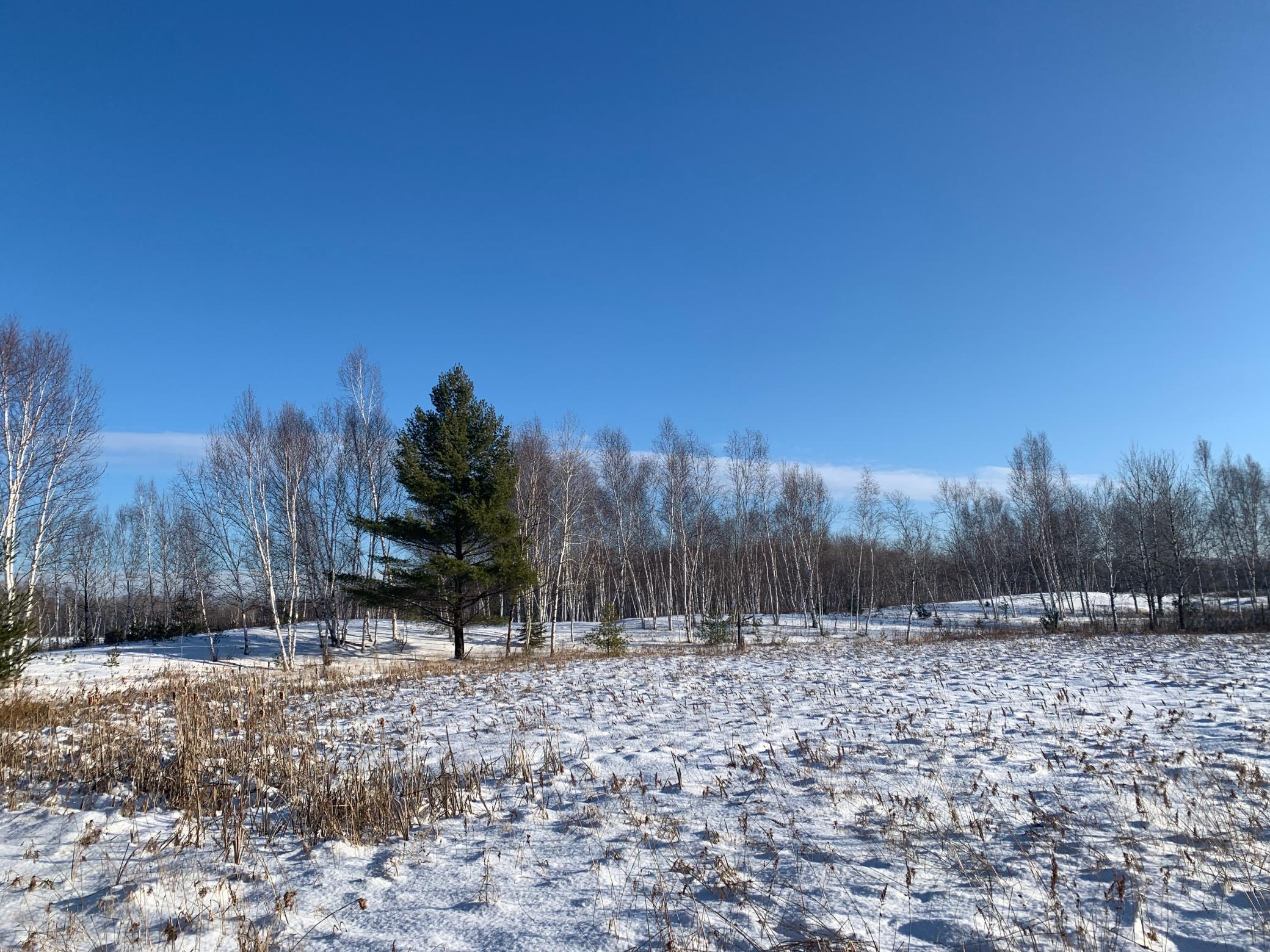 NA County RD 13 Property Photo - Brook Park, MN real estate listing