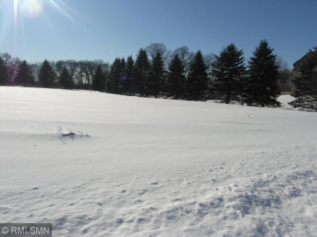 2734 146th Avenue NE Property Photo - Ham Lake, MN real estate listing